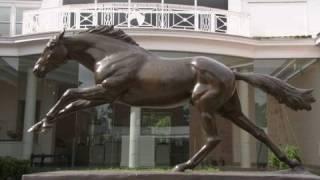 The National Racing Museum (webisode)