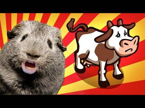 Farmville Sucks!!
