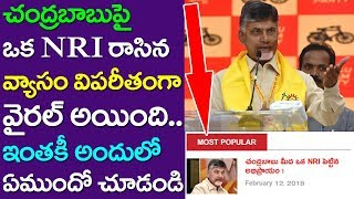 Excellent Comment By NRI On AP CM Chandra Babu Naidu | Andhra Pradesh | APNRT | Take One Media