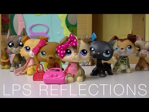 ⚡ LPS Reflections   NEW SERIES ⚡