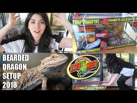 NEW Bearded Dragon Setup! | How To Set Up A Bearded Dragon 2018 | Zoo Med