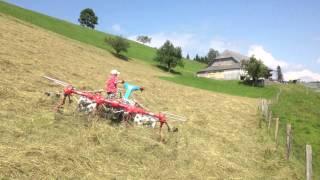 Keiner zu Klein ein Brielmaier Motormäher Fahrer zu sein !! Fabian 8 Jahre jung aus dem Eggiwil.