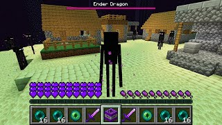 HOW THE ENDERMAN ATTACKED THIS VILLAGE IN MINECRAFT Inventory Noob vs Pro