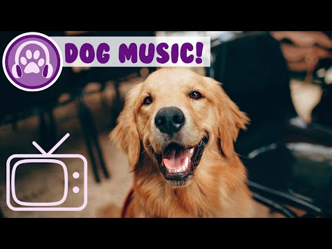 relaxing-music-for-dogs!-sounds-to-keep-your-dog-calm-and-help-sleep!
