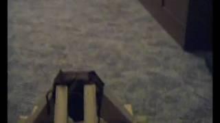 Abschuss Mini Onager.avi