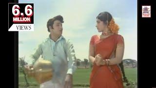Nethu Poothaley  Roja Mottu HD Song | MGR  Latha | TMS | Urimai Kural | நேத்து பூத்தாலே