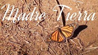 El Lado Mágico de Tlalpujahua : Capítulo 9   Madre Tierra