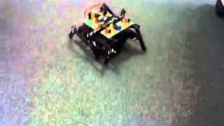 Kızılötesi Sensörlü Böcek Robot Projesi
