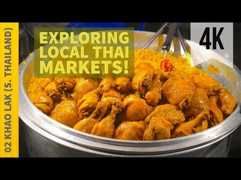 Dog Days Exploring Khao Lak's Popup Markets   Vlog 2   Thailand   4K