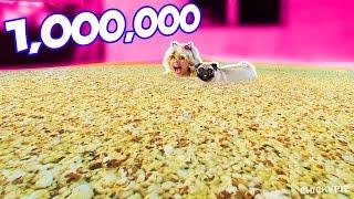 ป๊อปคอร์น 1 ล้านเม็ด ใน สระเป่าลม I ชิคกี้พาย คนกินจุ