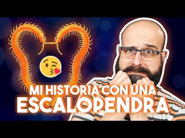 🐛 MI HISTORIA CON UNA ESCALOPENDRA | La subred de Mario
