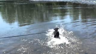 Lola Meets The River