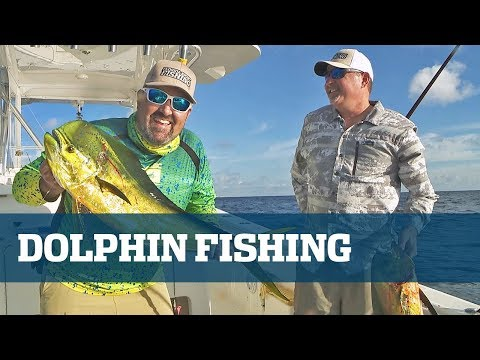 Florida Sport Fishing TV Live Seminar - Dolphin Fishing