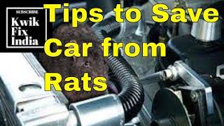 How to save your car from Rats? चूहों से कैसे बचायें कार को?- #kwikfixindia