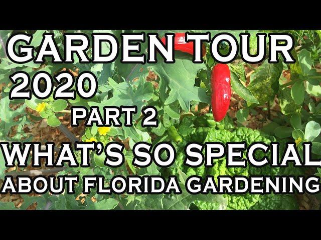 5 reasons we garden (FL) -Inspirational garden video -Natural Gardening basics for beginners-PART 2
