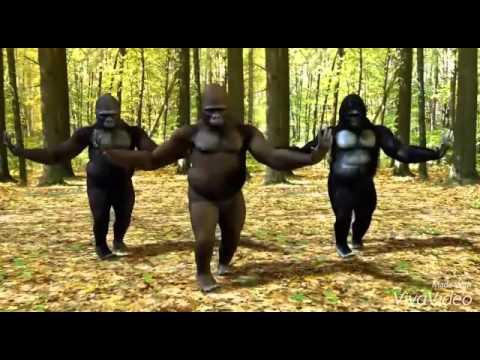 funny bathukamma song - telangana bathukamma funny dance rama rama uyyalo song