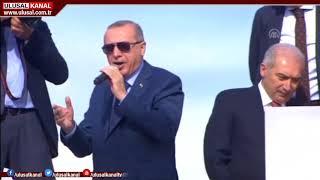 Dolar neden artıyor? TÜSİAD Başkanı Erol Bilecik, Ulusal Kanal'a değerlendirdi