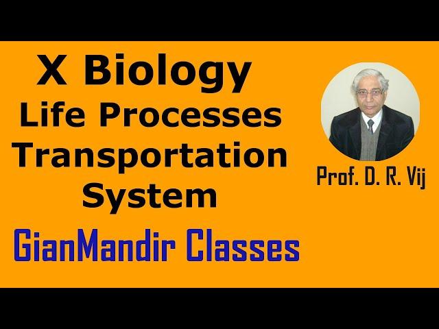 X Biology | Life Processes | Transportation System by Manjit Ma'am