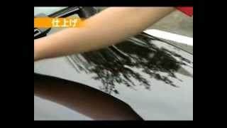 Willson Glass Guard - защитное покрытие для кузова автомобиля(Willson Body Glass Guard - защитное покрытие для кузова автомобиля на основе жидкого стекла. Купить: http://automotive.su/shop/poliroli..., 2012-12-26T20:24:47.000Z)