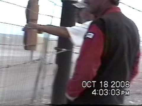 DEATH VALLEY RACEWAY 10-18-2008 MAIN