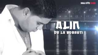 Alin de la Bobesti - Nu ma lasa sa mai plang ( Oficial Audio )