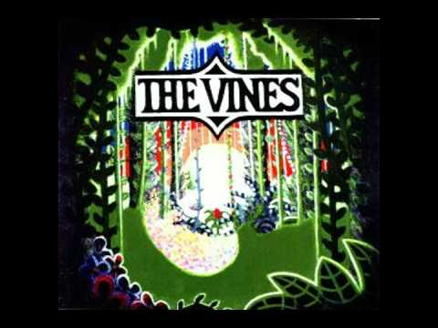 The Vines - Highly Evolved (Track 1)