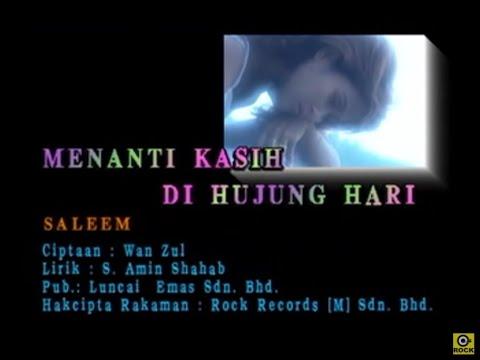 Saleem-Menanti Kasih Di Hujung Hari[Official MV]