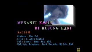 Gambar cover Saleem-Menanti Kasih Di Hujung Hari[Official MV]