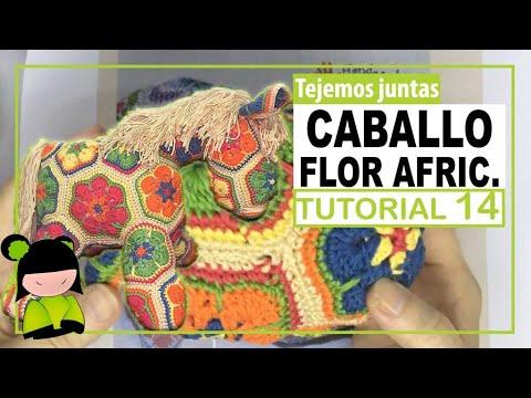 caballo flores africanas 14