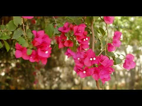 Parayathe Ariyathe |Jerin Kelakam| malayalam unplugged song