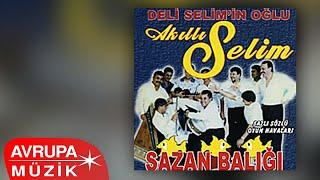 Akıllı Selim - Dana Dino (Official Audio) Resimi