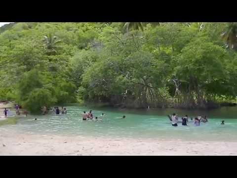 Playa Rincon las Galeras Samana