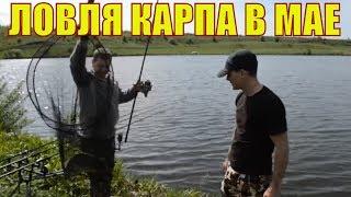 Ловля карпа по холодной воде в мае на пруду Крещенка / Карпфишинг