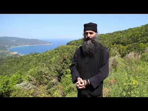 Comori din Sfantul Munte Athos