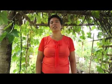 Video 1 - Sunrise Farmers Cluster, Talacogon, Agusan del Sur