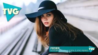 Feder - Goodbye (Vijay & Sofia Zlatko Remix)