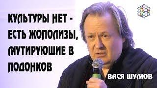 Культуры нет - есть жополизы: Василий Шумов