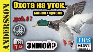 Охота на уток зимой видео