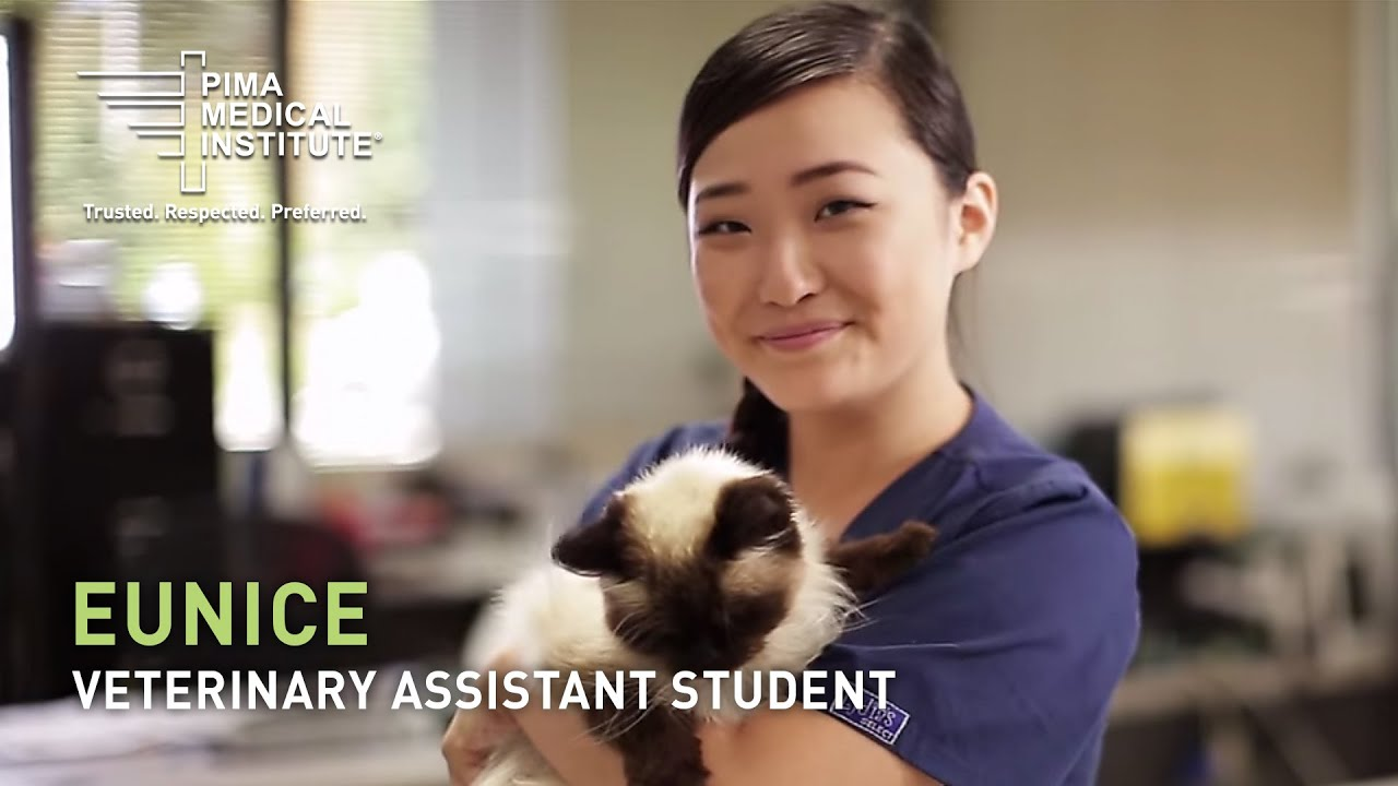 Veterinary Assistant Student Eunice Yang Hands On Learning Youtube