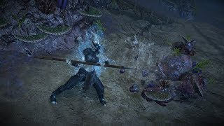 Path of Exile: Water Elemental Armour Set