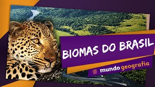 Biomas do Brasil - Mundo Geografia - ENEM