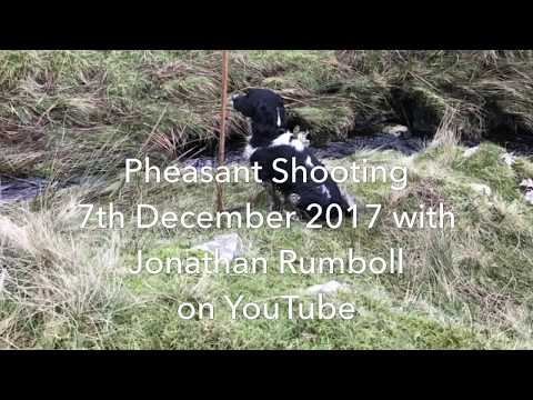 Pheasant Shooting 7th December 2017