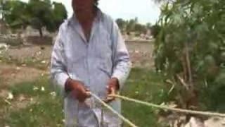 Ventana a mi Comunidad / Nahuas de Puebla 1