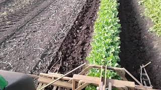 Rolnictwo Precyzyjne - Spulchnianie gleby