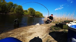 Рыбалка на поплавок и фидер ЖОР РЫБЫ НЕ УСПЕВАЮ ТАСКАТЬ !!!