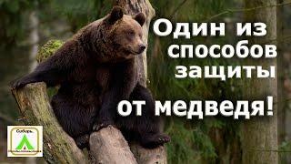 Один із способів захисту від ведмедя.