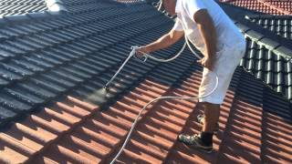 George Painters - Roof Painting