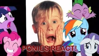 Ponies Reacting to Home Alone