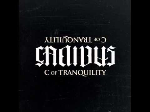 Canibus Salute (Album Version)