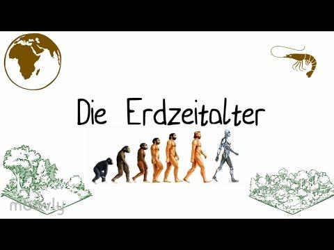 DIE ERDZEITALTER ERKLÄRT! BIOLOGIE